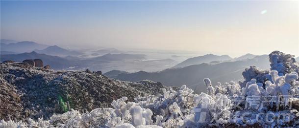 大龙山森林公园实拍图