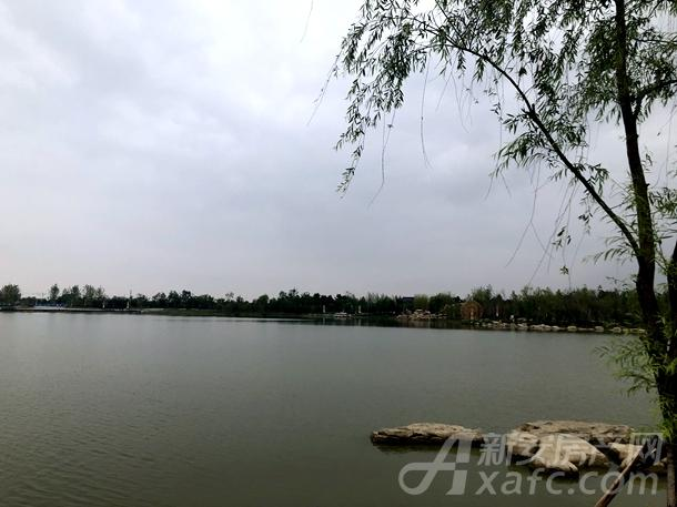 岳家湖公园