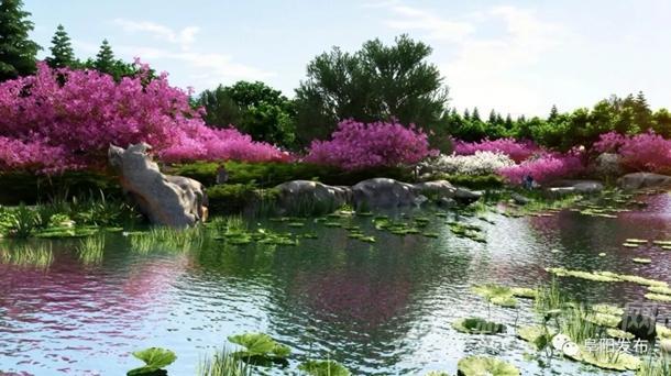 阜阳植物园北园梅园