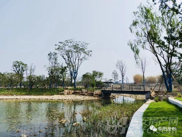 阜阳植物园梅园亭阁