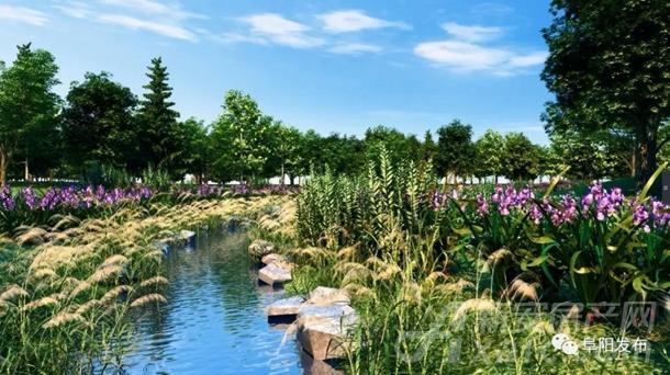 阜阳植物园西园水生园