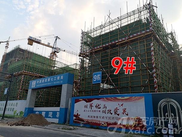 碧桂园书香名门9#楼项目进度