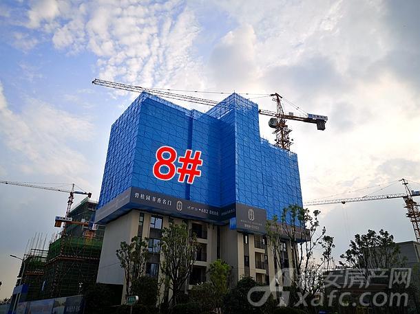 碧桂园书香名门8#楼项目进度