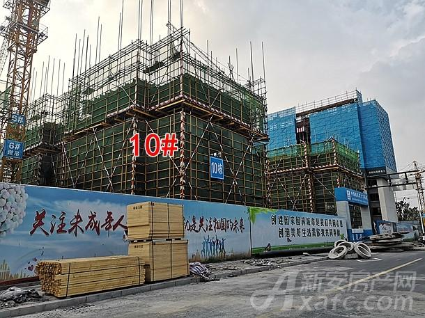 碧桂园书香名门10#楼项目进度