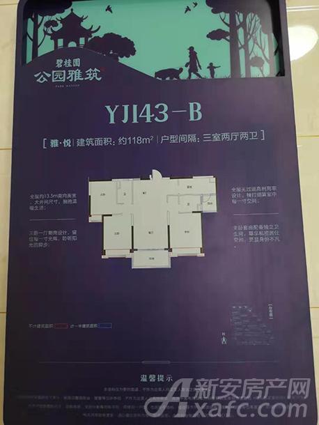 YJ143-B.jpg