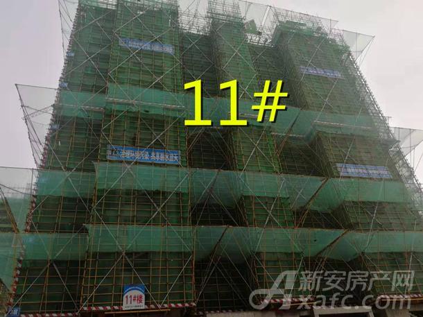 11#_副本.jpg