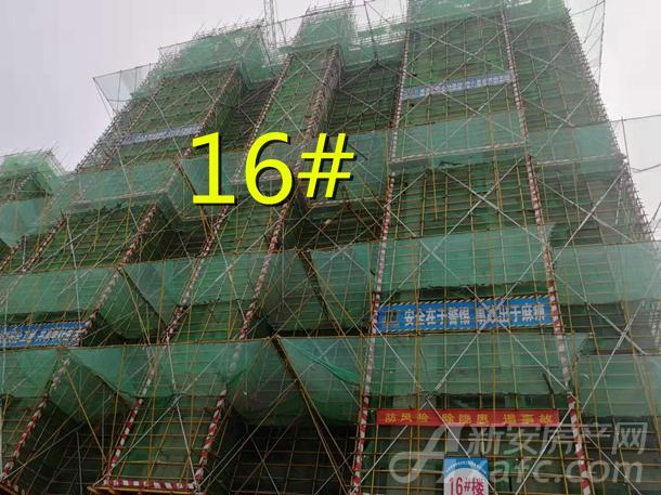 16#_副本.jpg