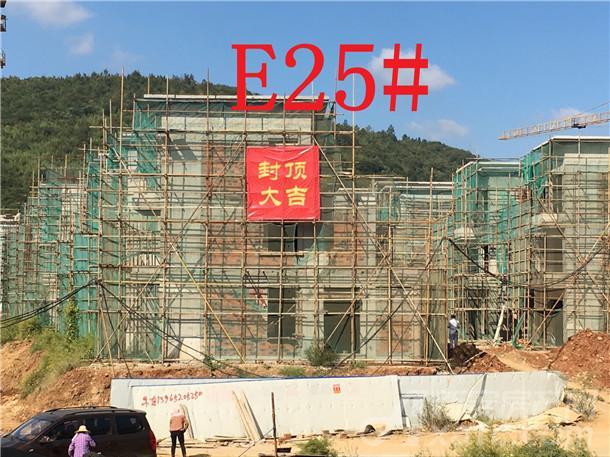 文一•十里春风E25#楼