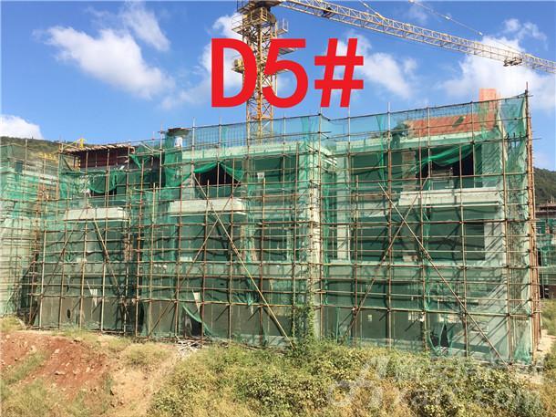 文一•十里春风D5#楼