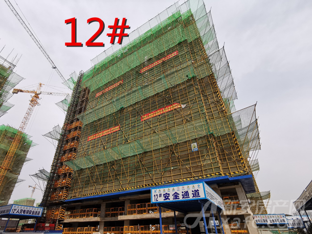 12#_副本.png