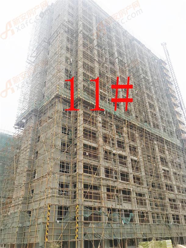 11#.jpg