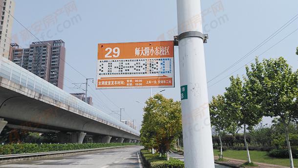 29路公交站牌