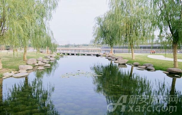 慈湖河景观带-风景1.JPG
