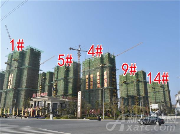 1#、5#、4#、9#、14#住宅建设中
