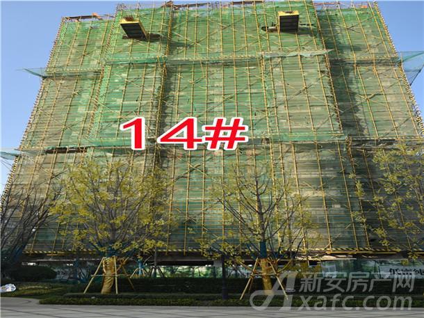 14#住宅建设中