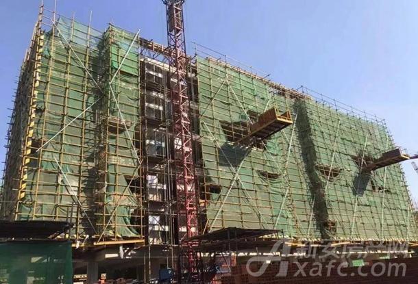 9#楼主体结构封顶,墙体砌筑完成