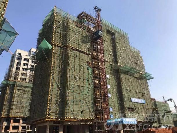 8#楼主体结构完成,墙体2-6层完成(共11层)