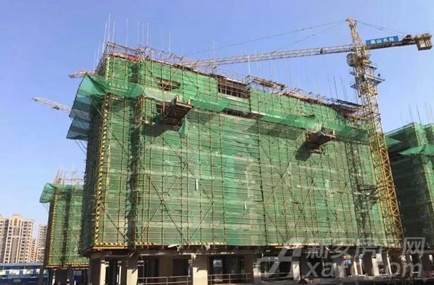 11#12#楼主体结构9层完成(共11层)