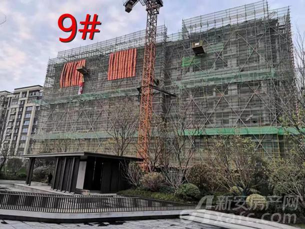 9#.jpg