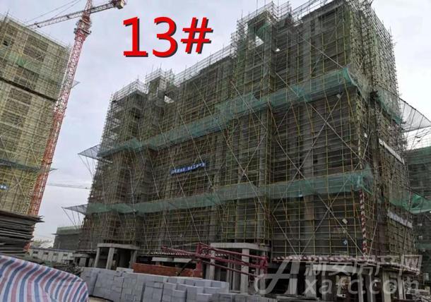 13#.jpg