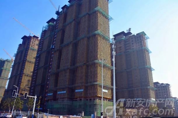 东湖世纪城3区最新工程进度