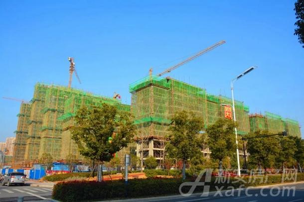 东湖世纪城5区最新工程进度