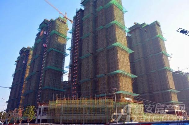 东湖世纪城7区最新工程进度