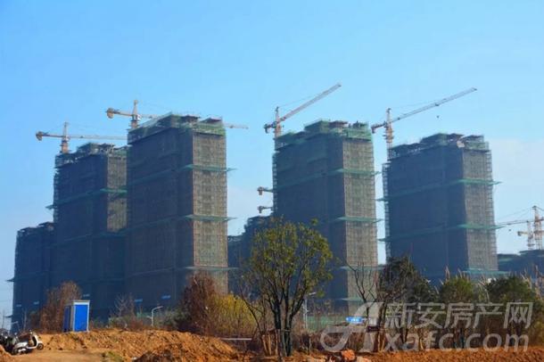 东湖世纪城8区最新工程进度