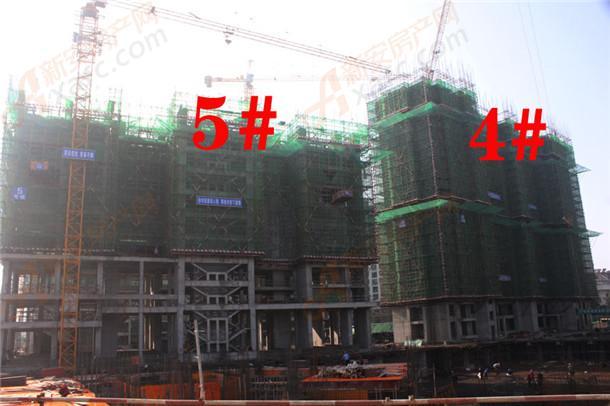 4#5#.jpg